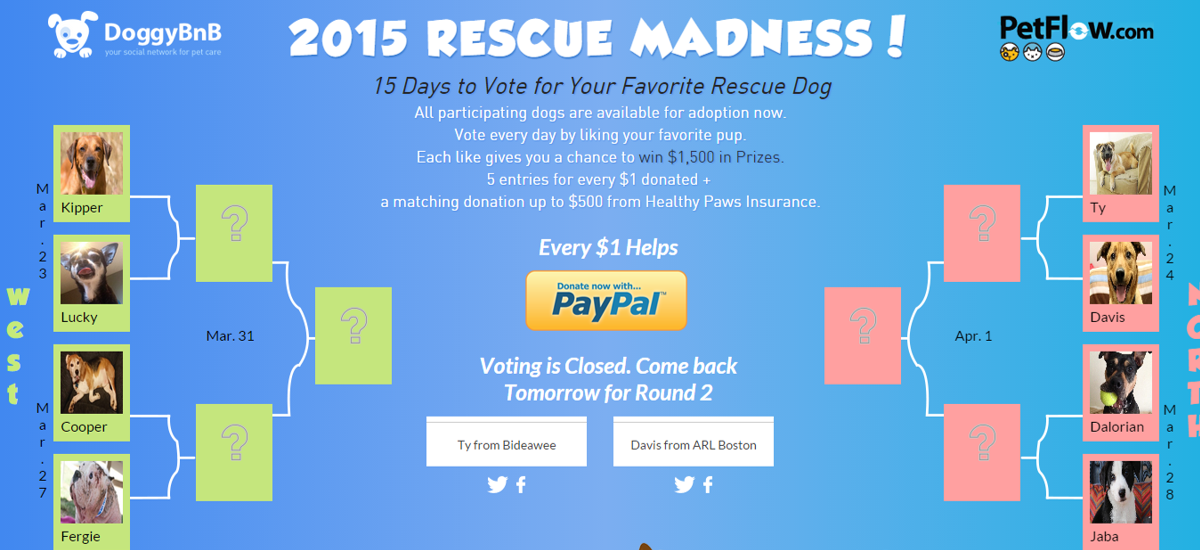 Forget NCAA March Madness. It's Time for Rescue Madness