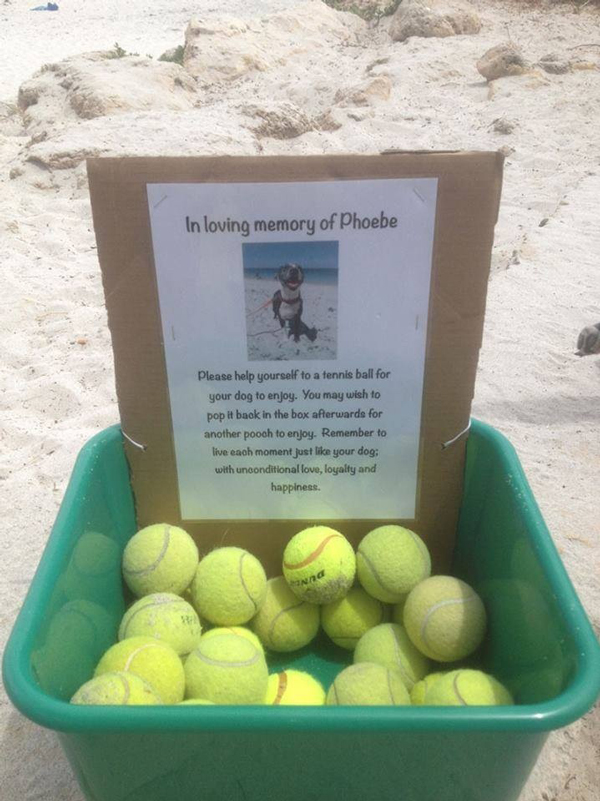 Pic We Love: A Tennis Ball Memorial for a Beloved Dog
