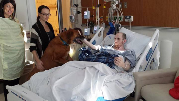Grab a Tissue: A Childhood Pet Visits His Owner's Hospital to Say Farewell