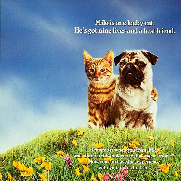 ผลการค้นหารูปภาพสำหรับ Adventure of Milo and Otis