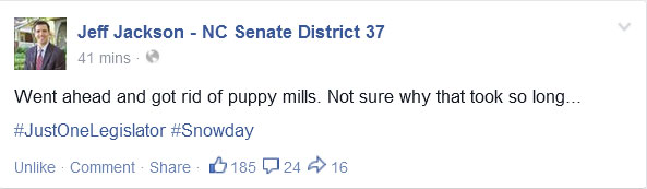 "North Carolina Senator Takes Advantage of Snow Day to ""Outlaw"" Puppy Mills"