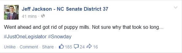 "North Carolina Senator Takes Advantage of Snow Day to ""Outlaw"" Puppy Mills"
