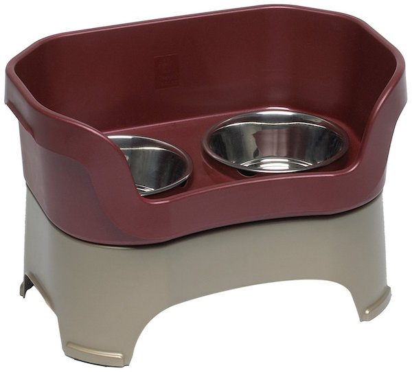 Win a Neater Feeder and End Your Dog's Messy Mealtimes