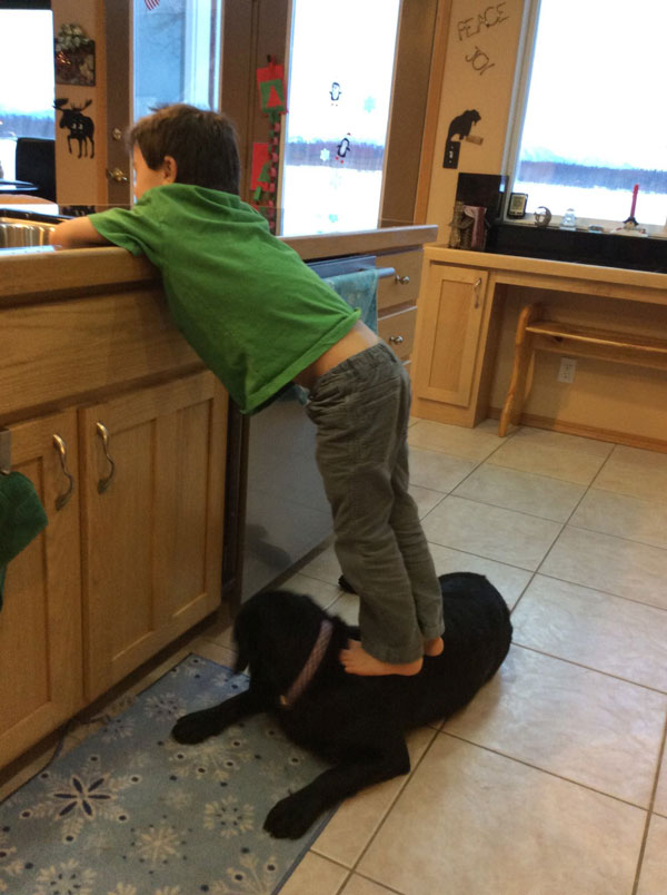Sarah Palin Posts Photos of Trig Standing on His Dog