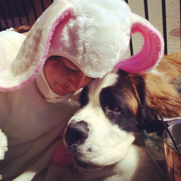 Fess Up: Does Your Lovable Dog Sometimes Annoy the Heck Out of You?