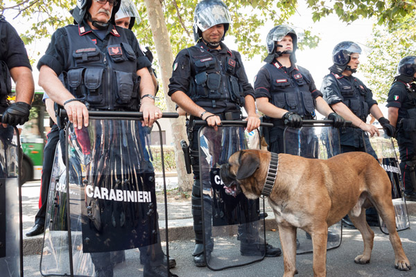 Italian Police Use Dogs to Search for the Lost Blood of a Pope