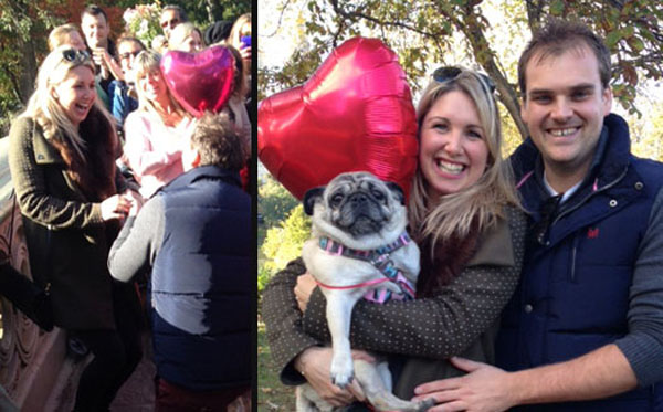 The Best Wedding Proposal Ever, Brought to You by 16 Pugs