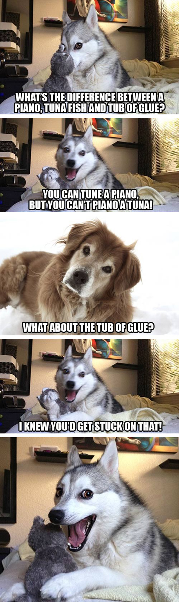 Sorry Doge, We Are All About Bad Pun Dog Now