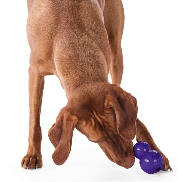 Win a Diamond Plate Double-Tuff Toy from Planet Dog