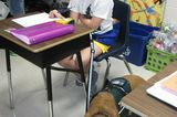 Aww of the Day: Service Dog Gets a Spot in a Seventh-Grade Yearbook Next to His Human