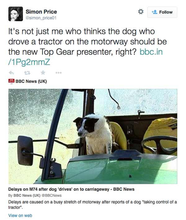 simon-price-tweet-don-the-dog_1