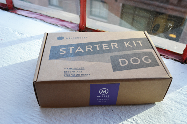 Dogster Obsessions: The Starter Kit for Dogs by Wildebeest