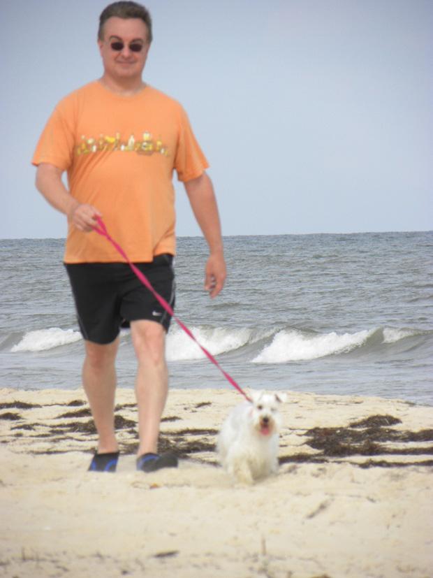 Rent A Puppy Long Island