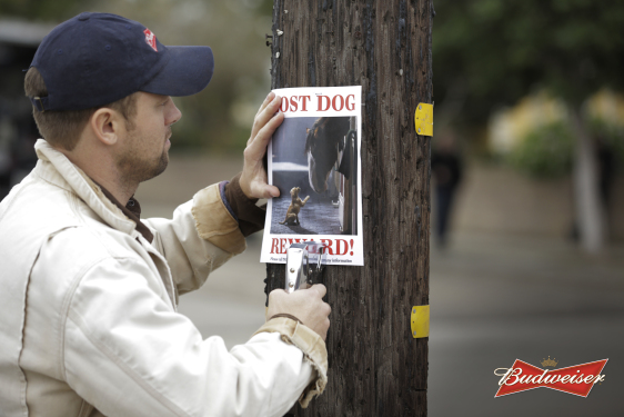 The Budweiser Puppy Is Back for the Super Bowl