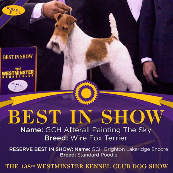 The Westminster Kennel Club Dog Show, Day 2: The Rest of the Winners