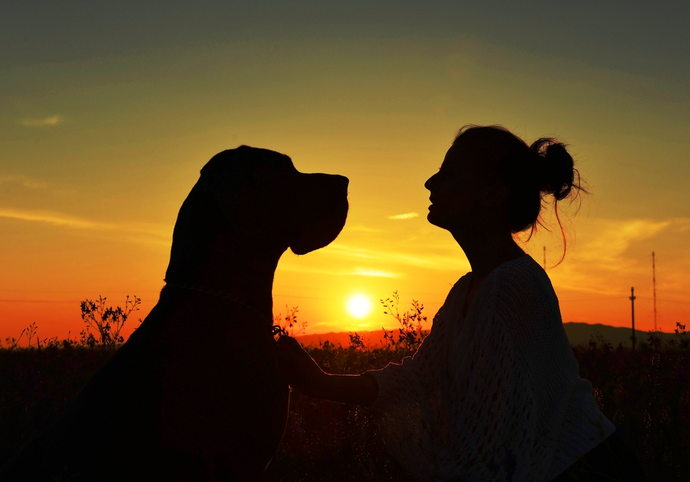 5 Reasons We Recommend Talking to Your Dog