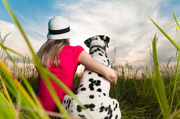 Resultado de imagen para dalmatian being hugged