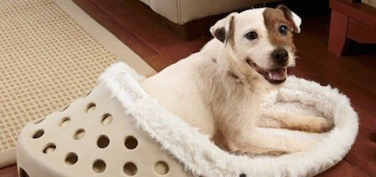 Win A Dog Bed That Looks Like A Giant Crocs Sandal From
