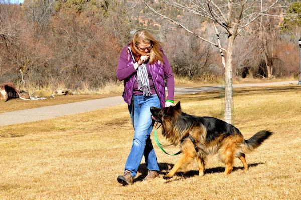 I work with clients to make them better on-leash walkers. (Photo by Tica Clarke Photography)