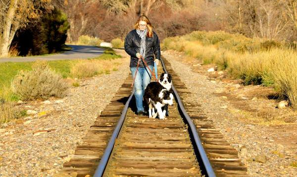 What to Do When an Off-Leash Dog Approaches Your Leashed Dog