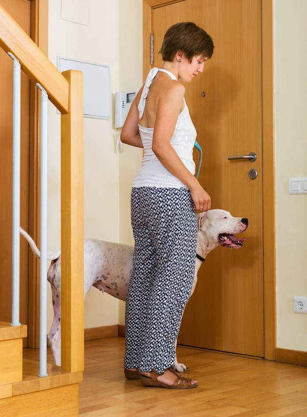 A Woman with a Dogo Argentino, standing by her door.