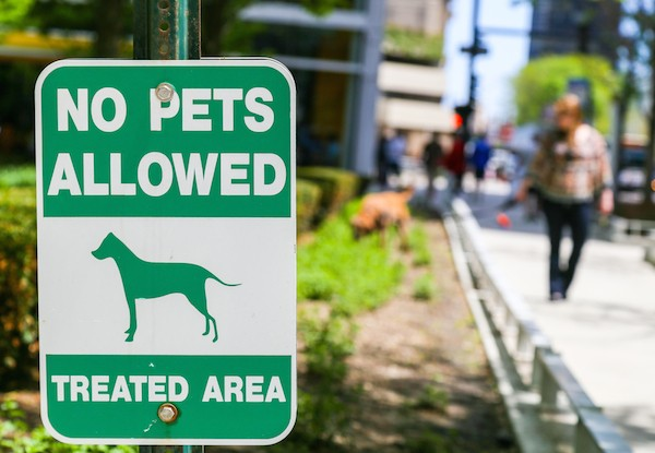 A not-so-dog-friendly area of Chicago by Michael Rosebrock / Shutterstock.