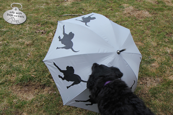 Lilah touches the opened umbrella