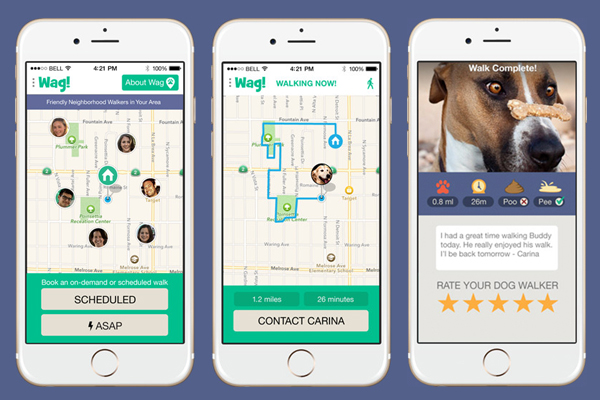 Use Wag dog walking app to make sure your pup gets the exercise he or she needs when you can't be home.