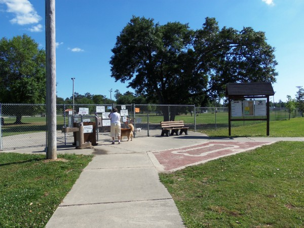 Public dog parks are favorite spaces for dogs and owners alike. (Kara Martinez Bachman photo)