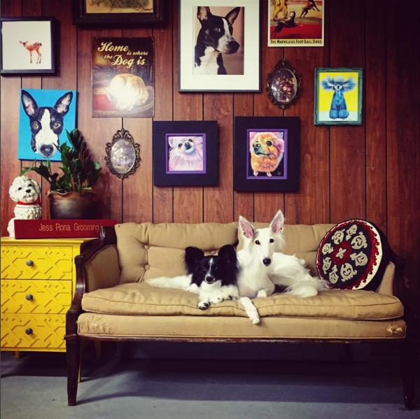 Jess Rona's grooming salon. (Photo courtesy JessRonaGrooming Instagram.