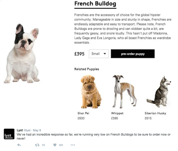 Frenchies are the accessory choice of the global hipster community, says Lyst. (Photo via Lyst on Twitter)