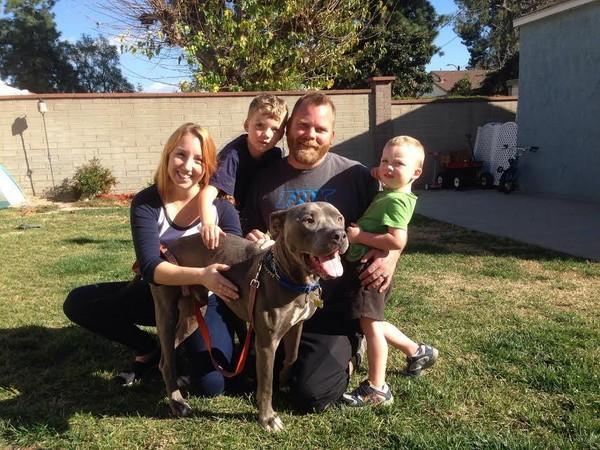 Spirit with his new family. (All photos courtesy Lynda Joyce, Bill Foundation)
