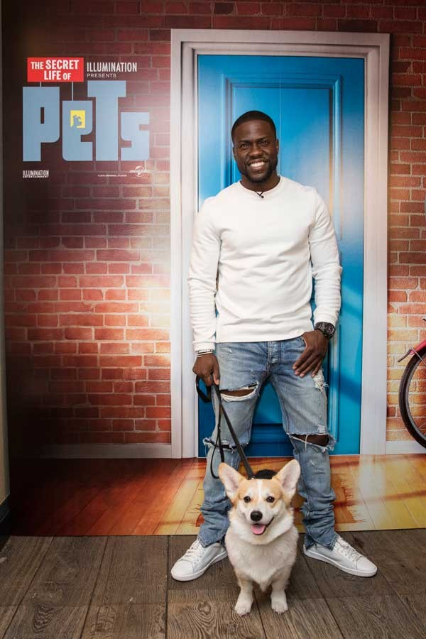 Winny got to hang out with movie star Kevin Hart. Photo courtesy Winny the Corgi/Instagram