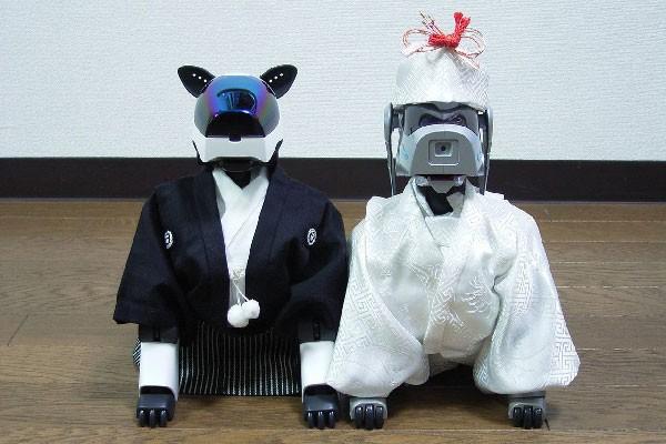 aibo-wedding-tatsuo-matsui-600px