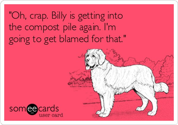 oh-crap-billy-is-getting-into-the-compost-pile-again-im-going-to-get-blamed-for-that-ada3f-2