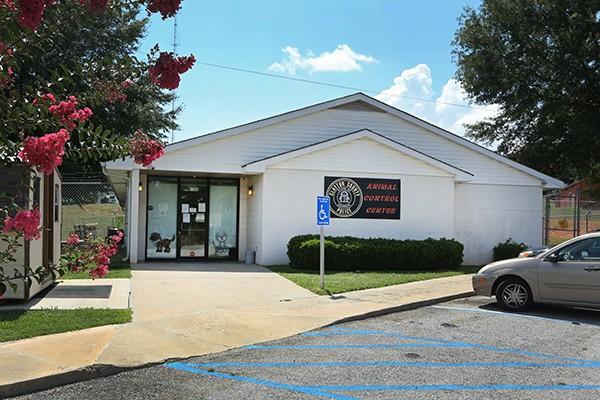 The Clayton County Animal Control shelter. (Photo courtesy Chris Savas)