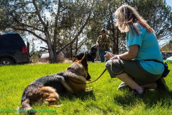 Annie using positive reinforcement strategies to work with a client. Photo Credit: Tica Clarke Photography