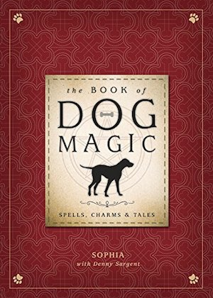 Welcome Your New Puppy With a Magic Spell