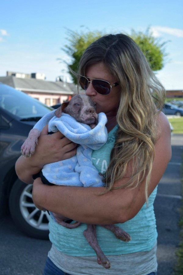 Eventually Guido did get to hold her little dog. She hails the produce driver, the former human officer, and Libre's Vet, Dr. Pryor, as heroes. (Photo courtesy the Speranza Animal Rescue Facebook page)