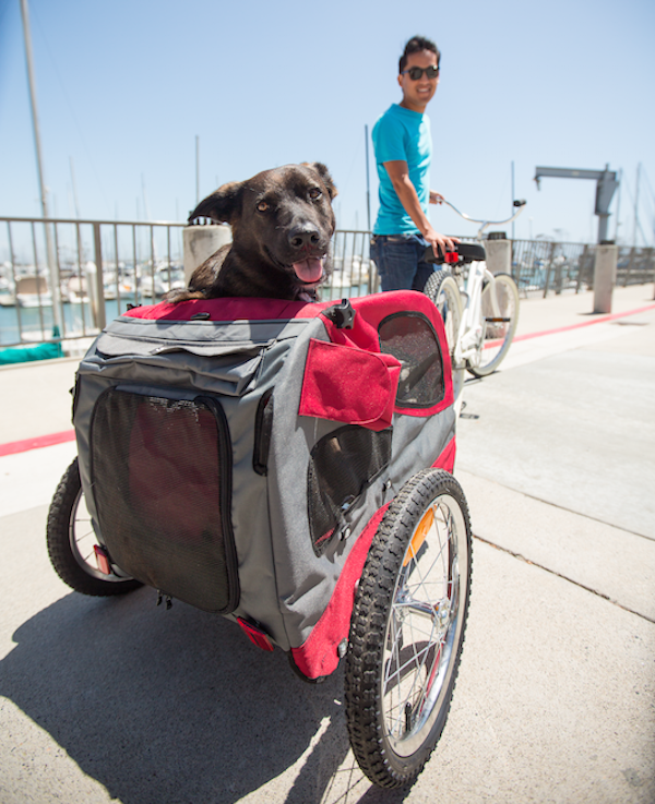 Take your dog along for the ride in a trailer. Finding the right one for your dog depends on his size and weight. When in doubt, check with your vet. Solvit's Medium HoundAbout Bicycle Trailer, Steel; $224.99.