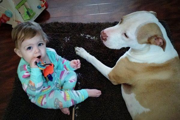 Sweet nanny Axle. (Photo by Meghan Lodge)