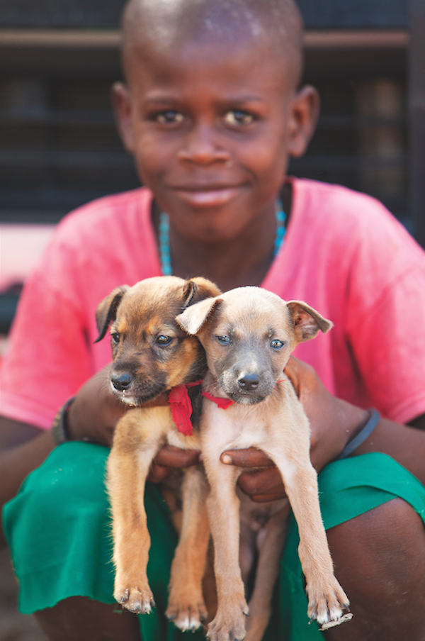 A Haitian boy with puppies. (Photo by Alan de Herrera)
