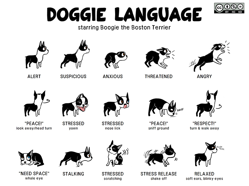 "A clip from the ""Doggie Language"" poster that went viral in 2011. The full thing is available under a Creative Commons license at Lili Chin's website."