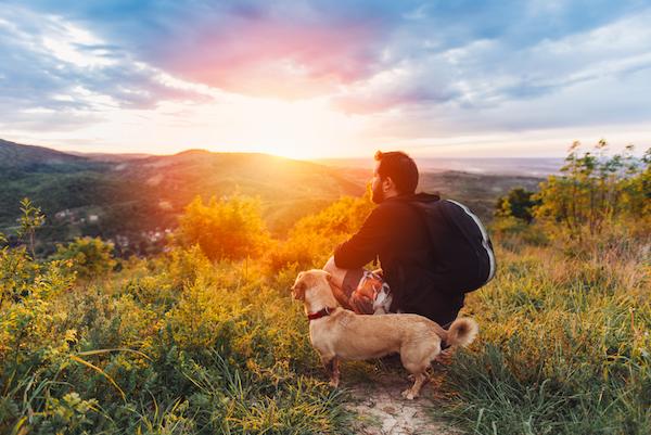 Natural Ways To Help Dogs Poop