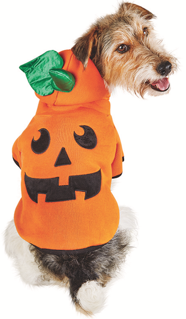 Photo and costume courtesy Petco.