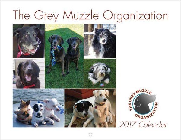 2017_dog_calendar_5