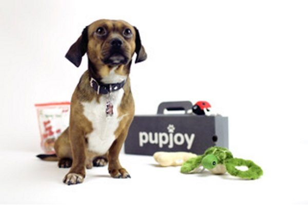 Pupjoy-subscription-box