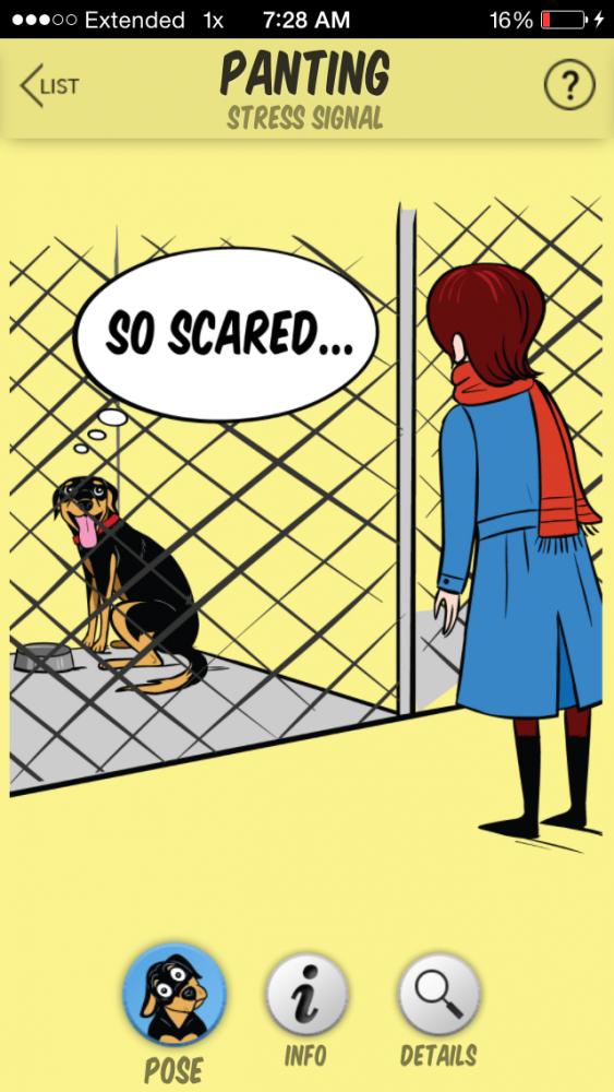DogDecoder_PantingShelterpose
