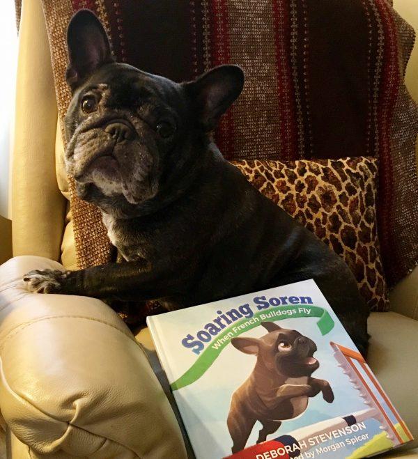 French Bulldog courtesy Deb Stevenson