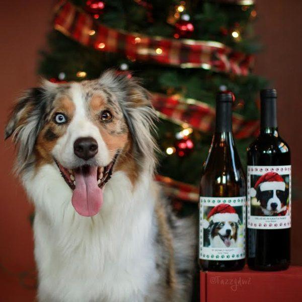 Windsor-Wines-custom-label-benefit-guide-dogs